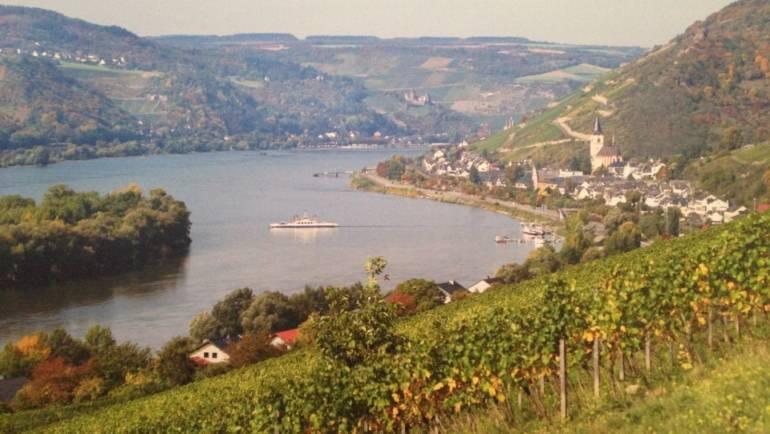 Domdechant Werner'sches Weingut:  Riesling d'eccellenza